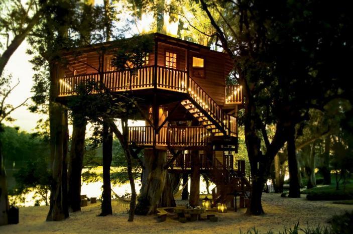 巴西阿拉拉斯的滨湖树屋-建筑设计-精彩文章-园林景观